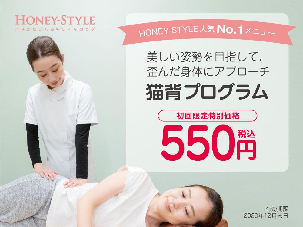 初回限定 猫背プログラム特別価格550円(税込)