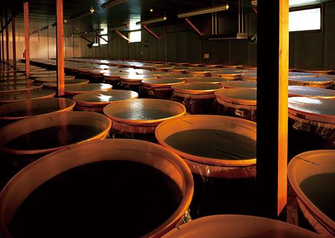 発酵によってうまれたアミノ酸などを自然のまま